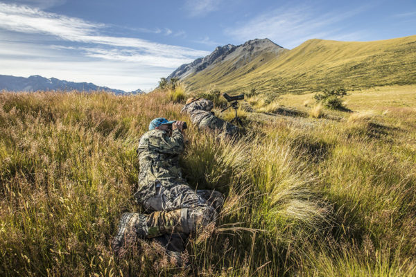 New Zealand Red Stag Trophy Hunt Gold Class