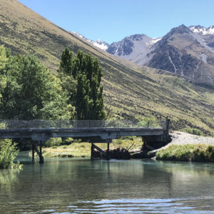 New Zealand Trout Streams and Rivers