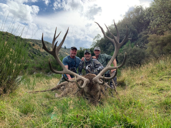 Trophy Red Stag Hunting New Zealand
